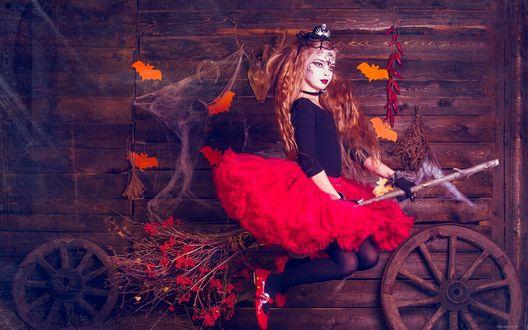 Обои Рыжая ведьмочка сидит на метле