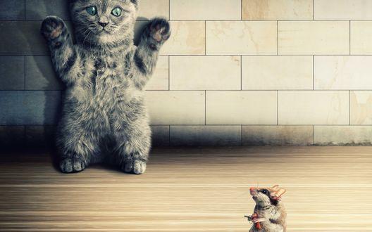 Обои Серый котенок, стоящий у стены с поднятыми вверх лапами перед маленьким мышонком, разгуливающим с игрушечным пистолетом