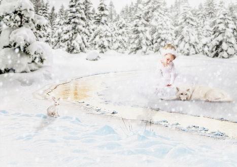 Обои Задумчивая, светловолосая девочка в белом одеянии, сидящая на снегу рядом с белым волком на берегу незамерзающего ручья на лесной опушке, напротив них на другом берегу ручья стоит заяц, автор Cellest 84