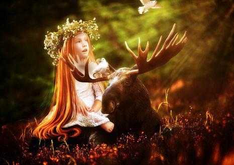 Обои Рыжеволосая девочка с венком из мелких, луговых цветов на голове, сидящая на спине у лося с ветвистыми рогами, наблюдает за полетом белого голубя, другой голубь сидит на рогах. автор Cellest 84