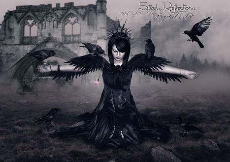 Обои Готическая женщина в платье с птичьим крыльями, стоящая на коленях с раскинутыми по бокам руками с сидящими на них черными воронами с цепочкой и сверкающим камнем в клюве одной из птиц, на фоне каменной стены замка, сумеречного неба, стелющимся по земле туманом, автор Steel-Roflections