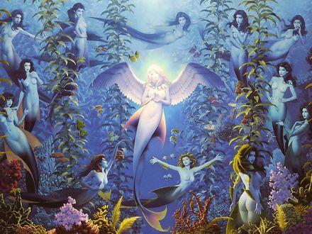 Обои Русалки плавают под водой среди водорослей вокруг своей сияющей светом королевы