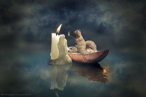 Обои Белка с горящей веткой, стоящая в лодке на поверхности воды, зажигает плывущую рядом с лодкой свечку, возле носа лодки в воде плавает декоративный фонарь с горящей в нем свечой, автор eventiu