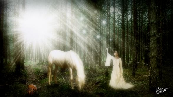 Обои Темноволосая девушка в длинном, белом платье с молниями, сверкающими у нее между пальцами руки, стоящая на лесной опушке рядом с пасущимся белым конем в ослепительных, солнечных лучах, автор Reginacamargo