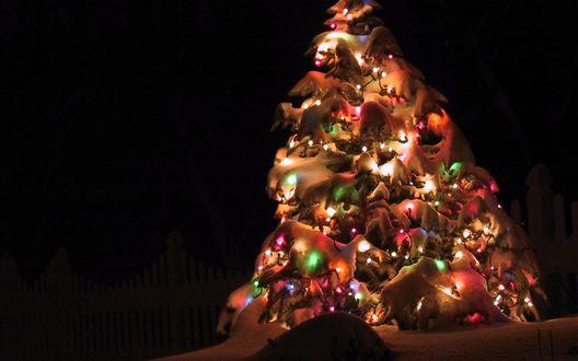 Обои Сильно заваленная снегом украшенная игрушками и светящейся гирляндой ель в ночи