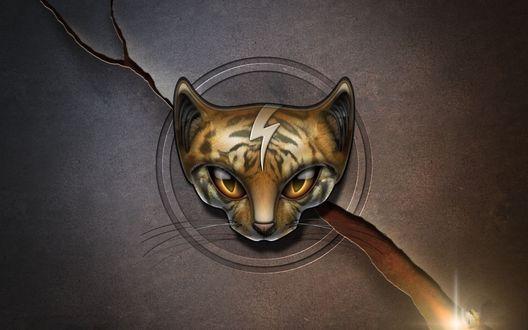 Обои Голова кошки в круге, логотип аудио видео плеера Winamp