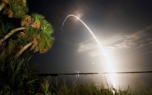 Обои Ракета праздничного салюта упала с ночного неба в море, осветив берег с растущими пальмами
