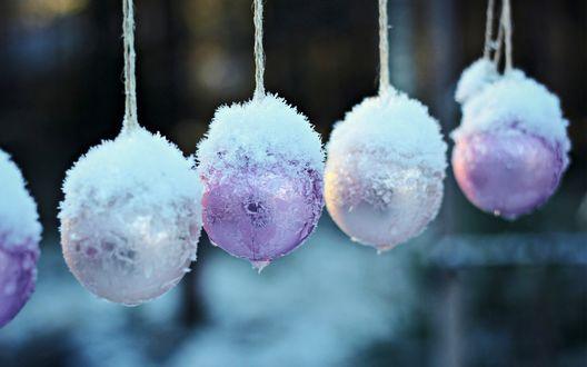 Обои Елочные новогодние шары висят присыпанные снегом