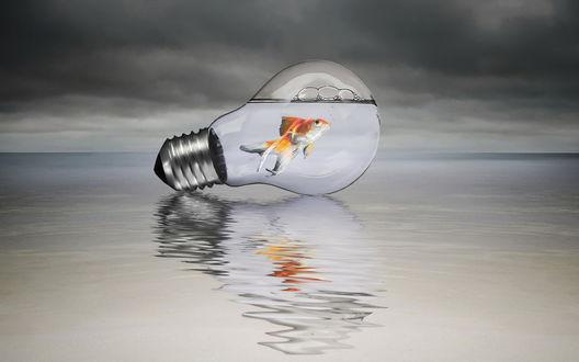 Обои Золотая рыбка плавает в лампочке которая стоит на водной глади и отражается в ней, сверху фон неба, затянутого черными тучами