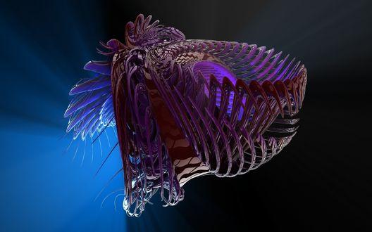 Обои 3D изображение скелета головы динозавра