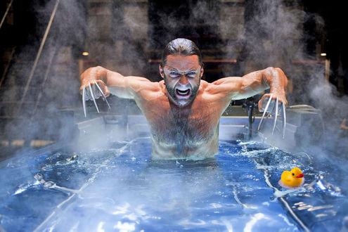 Обои Хью Майкл Джекман / Hugh Michael Jackman/ / австралийский и американский теле и киноактер, продюсер, исполнитель роли супергероя-мутанта Росомахи в антологии Люди Икс, стоит по пояс в воде, рядом плавает резиновый утенок