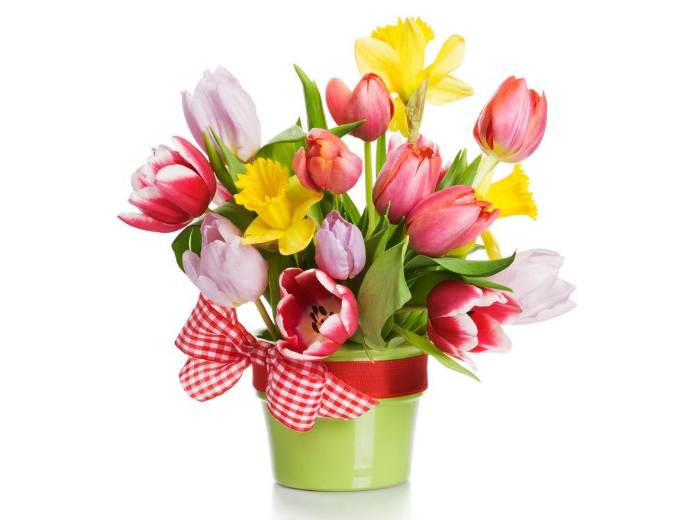 Нарциссы и тюльпаны букет
