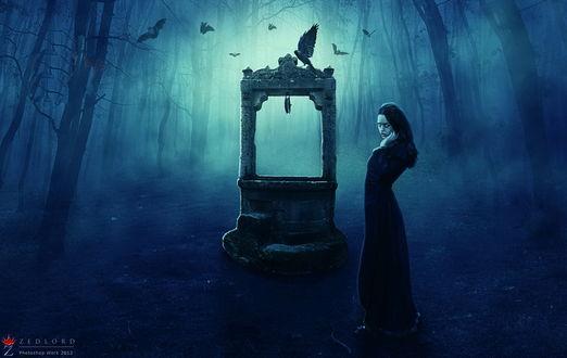 Обои Девушка вампир, стоящая невдалеке от каменной арки к которой слетаются черные вороны на опушке леса с густым туманом между деревьями, автор ZedLord-Art