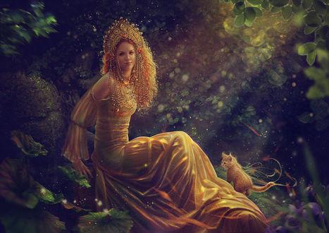Обои Девушка и рыжий котенок в лесу