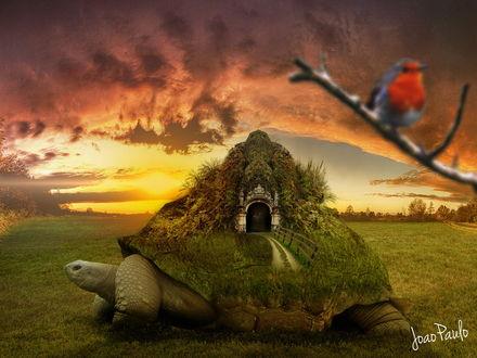 Обои На панцире огромной черепахи, ползущей по зеленой траве находится гора, заросшая деревьями, туннелем и входящим в него дорогой с деревянными перилами, автор srsilent 25