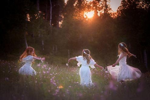 Обои Трое девочек в белых платьях водят хоровод на цветочной, лесной опушке на фоне заката на вечернем небосклоне