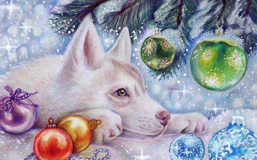 Обои Собака лежит у елки с игрушками
