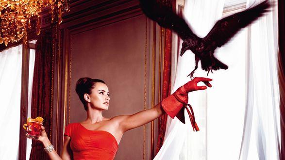 Обои Испанская киноактриса и модель Пенелопа Круз / Penelope Cruz, с вороном