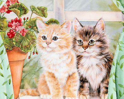Обои Два рисованных котика