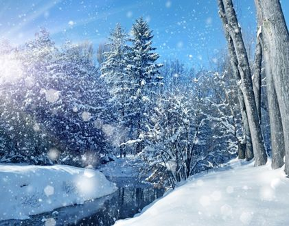 Обои Снег, падающий на реку и деревья