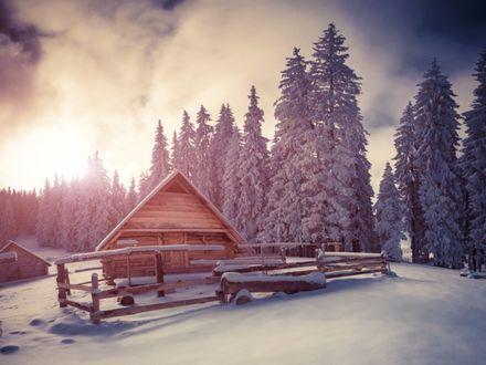 Обои Деревянный домик перед заснеженными елями