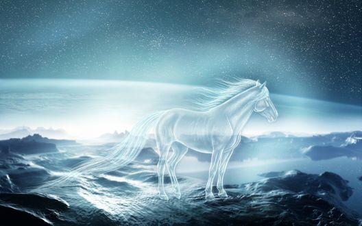 Обои Призрачный конь на фоне звездного неба