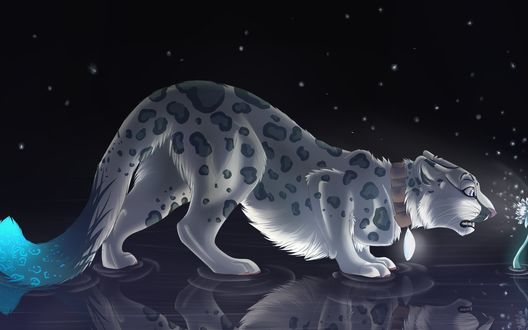 Обои Леопард на фоне звездного неба, смотрит на голубой цветок