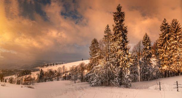 Обои Работа зимнее настроение, фотограф Гордеев Эдуард
