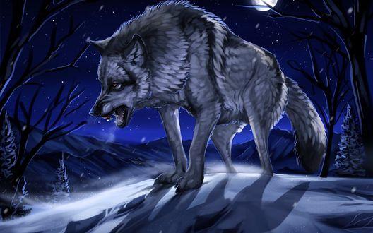 Обои Оскалившийся серый волк, идущий по заснеженным сугробам на фоне ночного, звездного неба и ярко светящей луны, осветившей заснеженную поляну