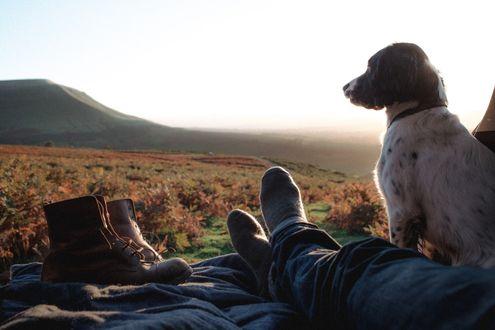 Обои Собака сидит рядом с ногами хозяина на фоне природы