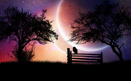 Обои Сова, сидящая на деревянном заборе невдалеке от деревьев, на фоне ночного, звездного неба и парада планет Солнечной системы, автор Emerald-Depths