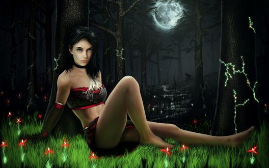 Обои Темноволосая девушка, сидящая на зеленой траве с красными цветами на фоне ночного неба и полной луны