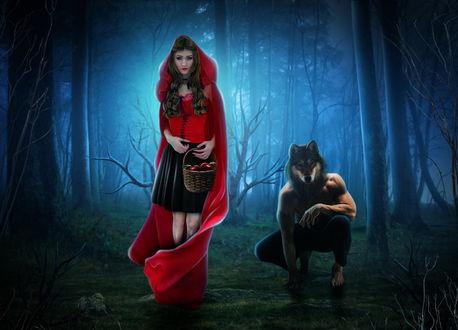 Обои Современная Красная шапочка в красном плаще с капюшоном, держащая в руках плетеную корзинку с красными яблоками, стоящая в сумеречном лесу, рядом с ней на корточках сидит накаченный, молодой человек с маской волка на голове, автор Wesley-Souza