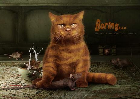 Обои Рассерженный, коричневый кот придавил своей лапой одну из мышей, большое количество которых бегает в комнате (Boring./ Скучно), автор Cindy Grundsten
