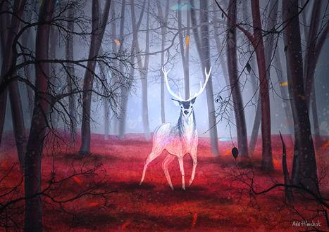 Обои Призрачный олень в осеннем лесу