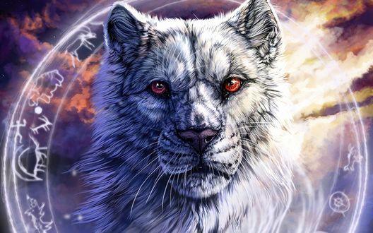 Обои Белый волк с красными глазами на фоне магического круга с символами