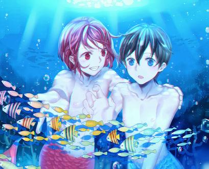 Обои Матсуока Рин / Matsuoka Rin и Нанасе Харука / Nanase Haruka из аниме Свободный стиль! / Free!