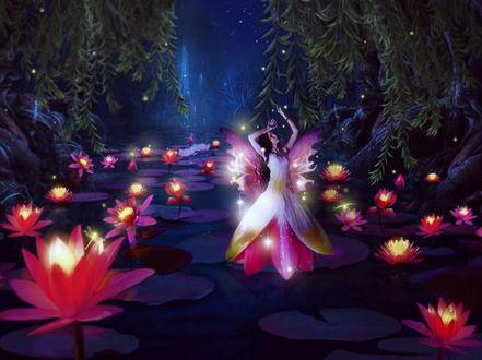 Обои Лесная девушка-фея в цветочном платье, стоящая на листке лотоса, растущего в лесном ручье в окружении ярко светящихся лотосов на фоне звездного, ночного неба, автор misscc59760