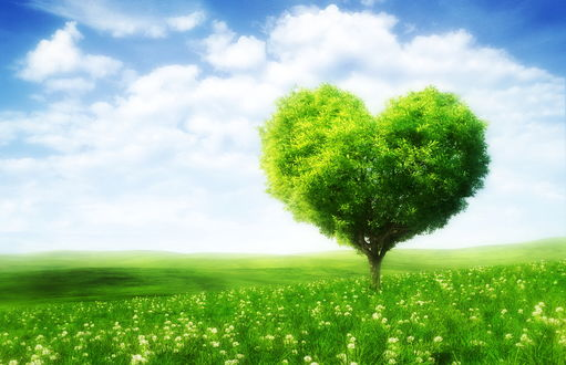 Обои Зеленое поле в цветах, облачное небо, дерево с кроной в виде сердечка