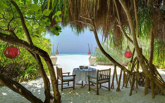 Обои Столик на двоих для романтического ужина накрыт под сенью пальм на морском побережье