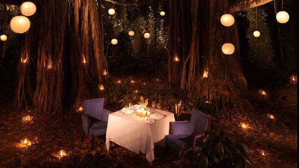 Обои В лесу среди могучих деревьев, в окружении горящих фонариков и свечей, стоит столик на двоих