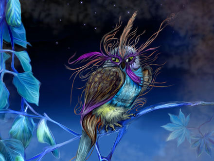 Обои Разноцветная сова сидит на ветке дерева, на фоне звездного неба