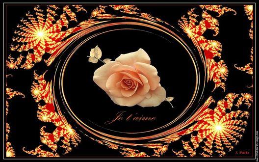 Обои Роза на темном фоне с абстракцией