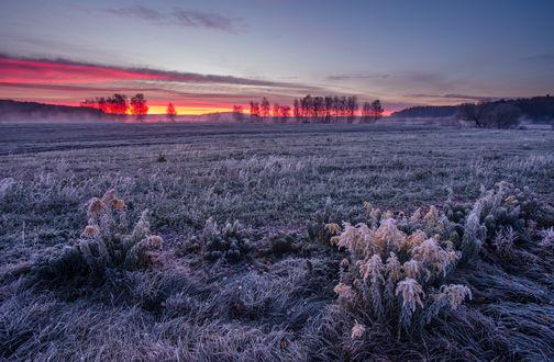 Обои Закатная, багряная полоска на вечернем небосклоне над полем, покрытом инеем, автор Алексей Угальников