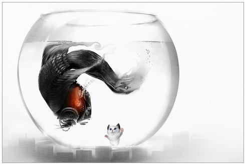 Обои Котенок удивленно смотрит через стекло аквариума на рыбу-робота