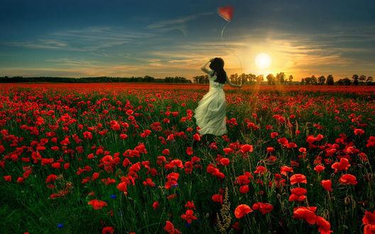 Обои Девушка в белом платье с воздушным шариком в виде сердца идет по полю красных маков в лучах вечерней зари