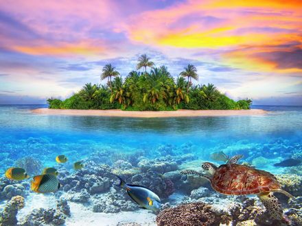 Обои Подводный океанский мир с плавающими рыбами, черепахой на фоне небольшого песчаного острова с растущими на нем пальмами и вечернего небосклона с цветными облаками