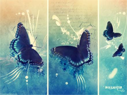 Обои Серия нарисованных бабочек