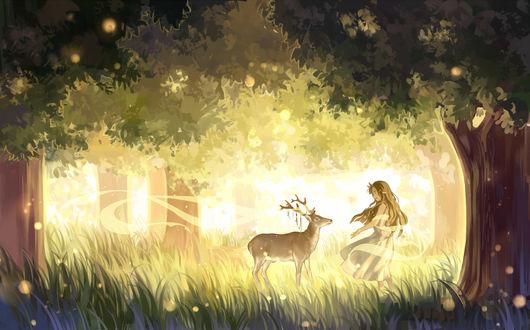 Обои Эльфийка и олень в лесу