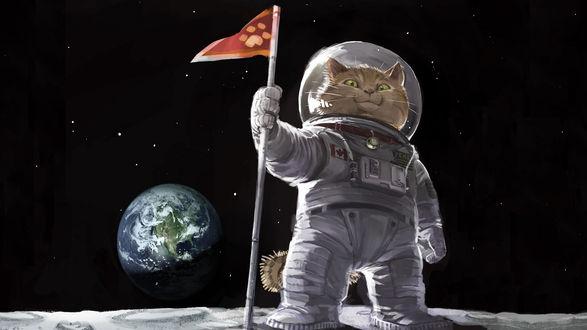 Обои Кот-астронавт в скафандре на луне